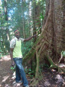 Dominica trail hike